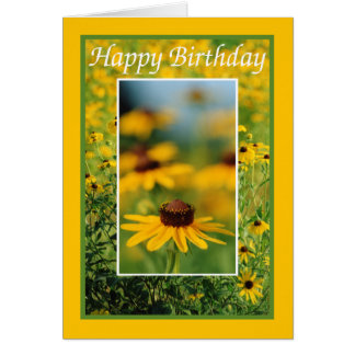 Birthday - Black-Eyed Susans Greeting Card