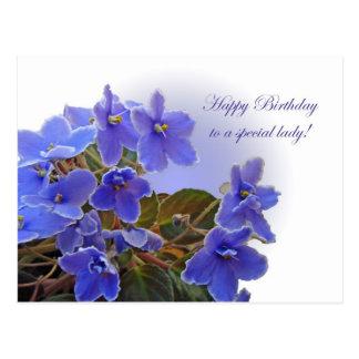 Birthday Blue African Violets Postcard