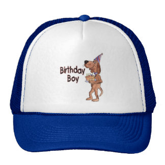 birthday boy hat