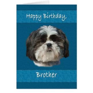 Birthday, Brother , Shih Tzu Dog Card