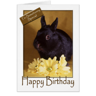 Birthday - Bunny and Daisies Greeting Card