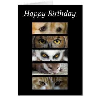 Birthday Card - Animals Eyes