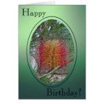 Birthday Card - Banksia Flower