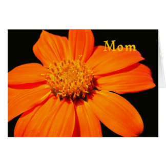 Birthday Card for Mom, Big Orange Flower