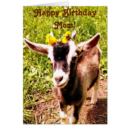 Birthday Card for Mum - From Favourite Kid (Goat)