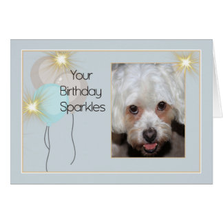 Birthday Card from Pet Lhasa Apso Dog