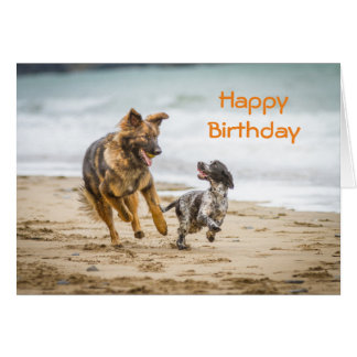 Birthday Card German Shepherd Dog Cockerspaniel