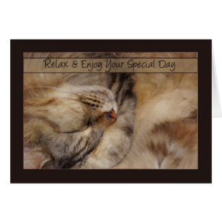 Birthday Card Relax With Sleeping Maine Coon Cat