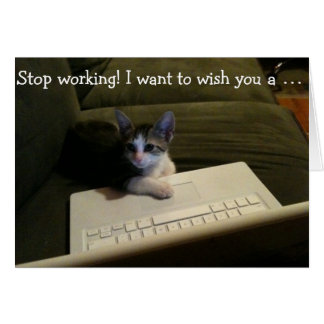 Birthday Card with Cat: Stop Working!