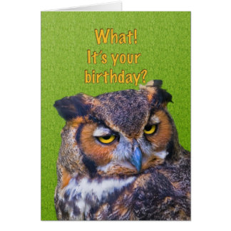 Birthday Card with Great Horned Owl