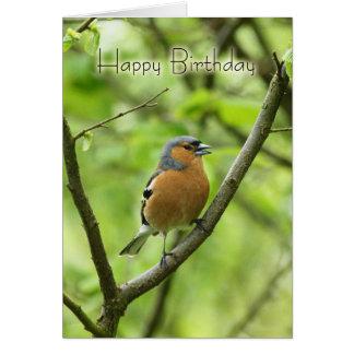 Birthday Card With Male Chaffinch (Fringilla coele