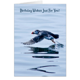 Birthday Card with Puffin