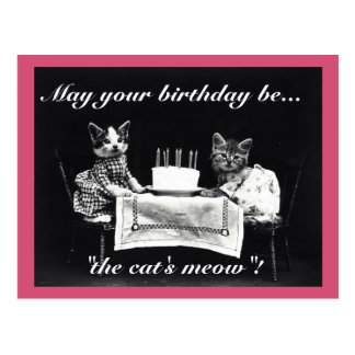 Birthday Cat's Meow Postcard