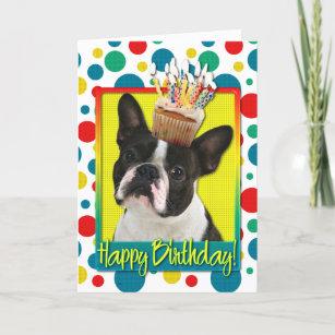Boston Terrier Birthday Gifts On Zazzle AU