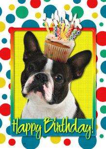 Happy Birthday With Boston Terrier Gifts On Zazzle AU