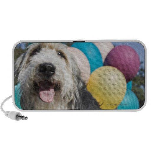 Birthday dog iPhone speakers