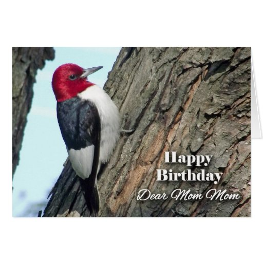 Birthday for Mom Mom, Red-headed Woodpecker Greeting Card