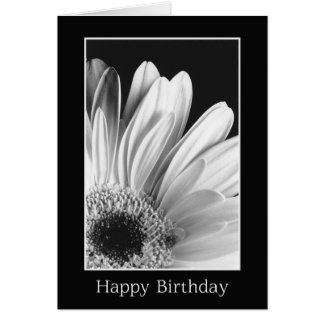 Birthday - Gerber Daisy Greeting Card
