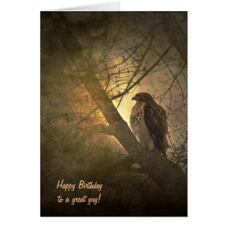 birthday-hawk in tree card
