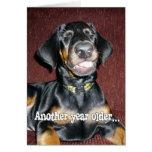 Birthday Humour - Smiling Doberman Pinscher Puppy Card