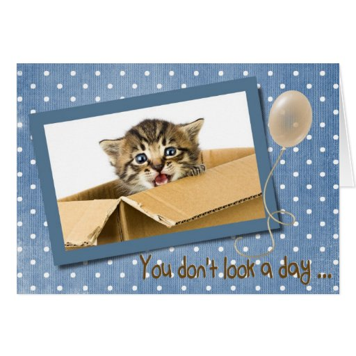 Birthday Kitten in a box Cards