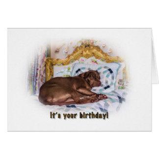Birthday,  Labrador Retriever Dog, Card