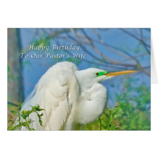 Birthday Pastor s Wife Great Egret Bird Greeting Card