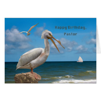 Birthday, Pastor, White Pelican on a Rock Card