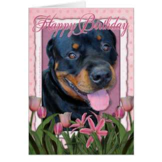Birthday - Pink Tulips - Rottweiler - Harley Card