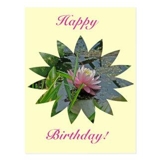 Birthday Pink Water Lily Postcard
