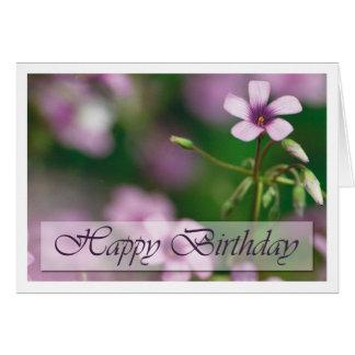 Birthday - Pink Wood Sorrel Greeting Card