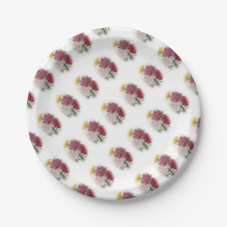 Birthday Pinks - Soft Edged Oval 7 Inch Paper Plate