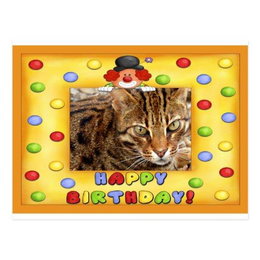 Birthday Postcard Bengal Cat