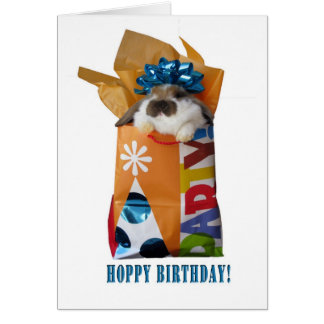 Birthday rabbit greeting card