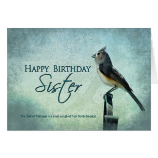 BIRTHDAY - SISTER - TITMOUSE SONGBIRD CARD