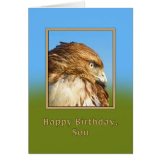 Birthday, Son, Rough-legged Hawk Card