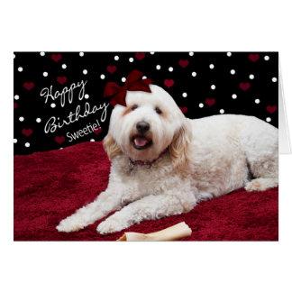 BIRTHDAY - SWEETIE - GOLDEN DOODLE CARD