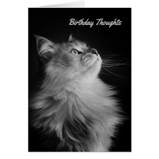 Birthday Thoughts, Siberian Style Card