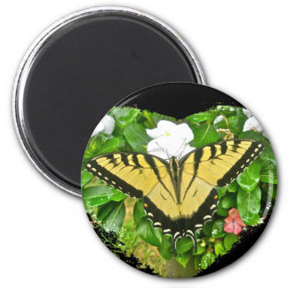 Birthday Tiger Swallowtail Butterfly Items 6 Cm Round Magnet