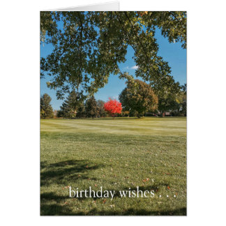 Birthday Wishes for a One-of-a-Kind Friend! Card
