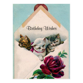 Birthday Wishes - Kittens in Envelope - Post Card