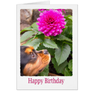Birthday Wishes With Dahlia And Spaniel Dog Card