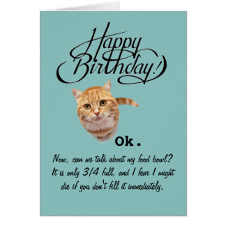 Birthdays From a Cat's Perspective (Birthday Card) Greeting Card