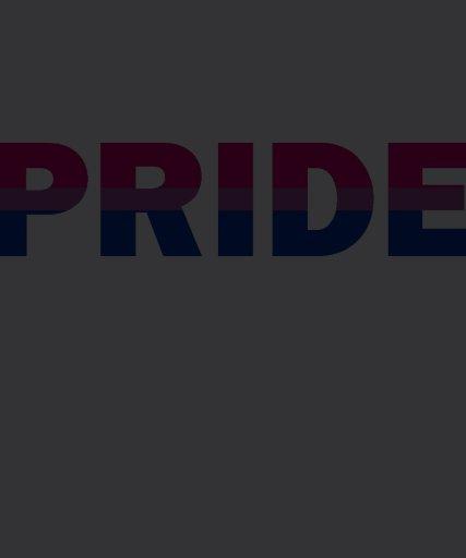 Bisexual Pride Flag Tee Shirts