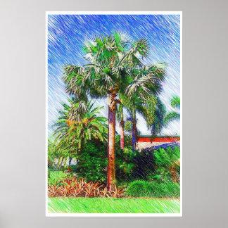 Bismarckia nobilis palm tree, color pencil drawing poster