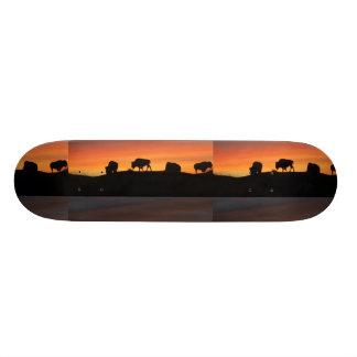 Bison 20 Cm Skateboard Deck