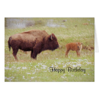 Bison and Calf in Yellowstone Birthday Card