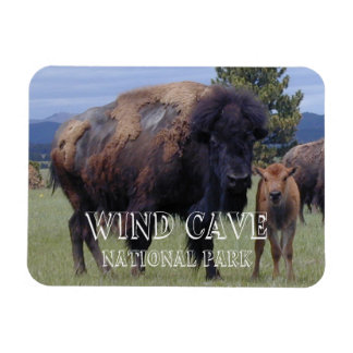 Bison and Calf, Wind Cave National Park, SD Magnet