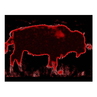 Bison / Buffalo Postcard