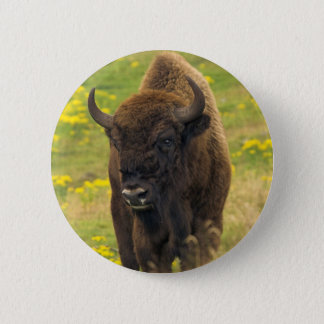 Bison Button Badge